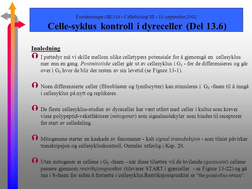 Forelesninger i BI 316 - Cellebiologi III - 10.september 2002 Genetiske studier av gjærceller (Del 13.5)-forts. G 1 cykliner og Cdc28 - start på S-fas