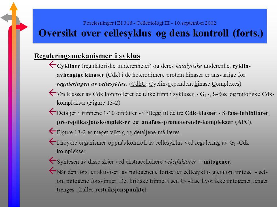 Forelesninger i BI 316 - Cellebiologi III - 10.september 2002 Oversikt over cellesyklus og dens kontroll (forts.) Skjematisk oversikt over syklusen ß