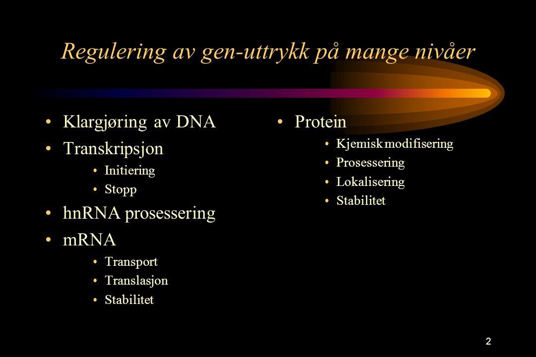 2 Regulering av gen-uttrykk på mange nivåer Klargjøring av DNA Transkripsjon Initiering Stopp hnRNA prosessering mRNA Transport Translasjon Stabilitet Protein Kjemisk modifisering Prosessering Lokalisering Stabilitet
