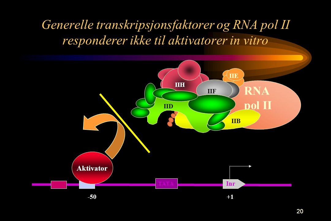 20 Generelle transkripsjonsfaktorer og RNA pol II responderer ikke til aktivatorer in vitro -50 Aktivator +1 TATA Inr RNA pol II IIF IIH IIE IIB IID