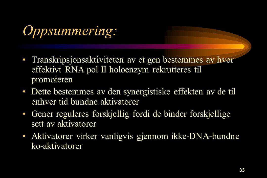 33 Oppsummering: Transkripsjonsaktiviteten av et gen bestemmes av hvor effektivt RNA pol II holoenzym rekrutteres til promoteren Dette bestemmes av den synergistiske effekten av de til enhver tid bundne aktivatorer Gener reguleres forskjellig fordi de binder forskjellige sett av aktivatorer Aktivatorer virker vanligvis gjennom ikke-DNA-bundne ko-aktivatorer