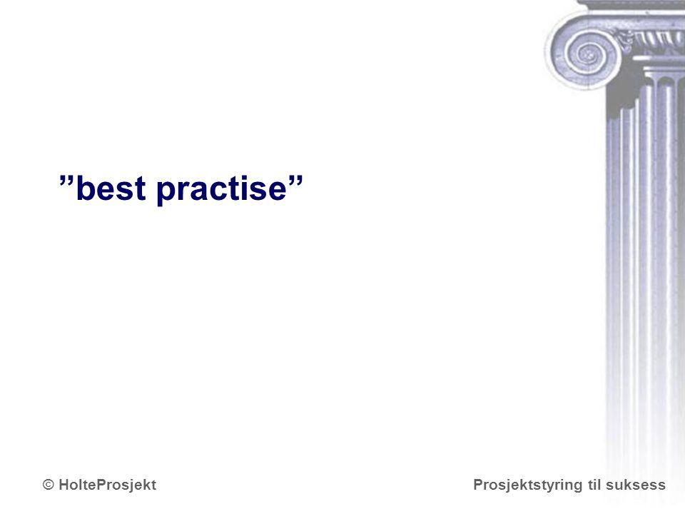 "www.holteprosjekt.no Prosjektstyring til suksess© HolteProsjekt ""best practise"""