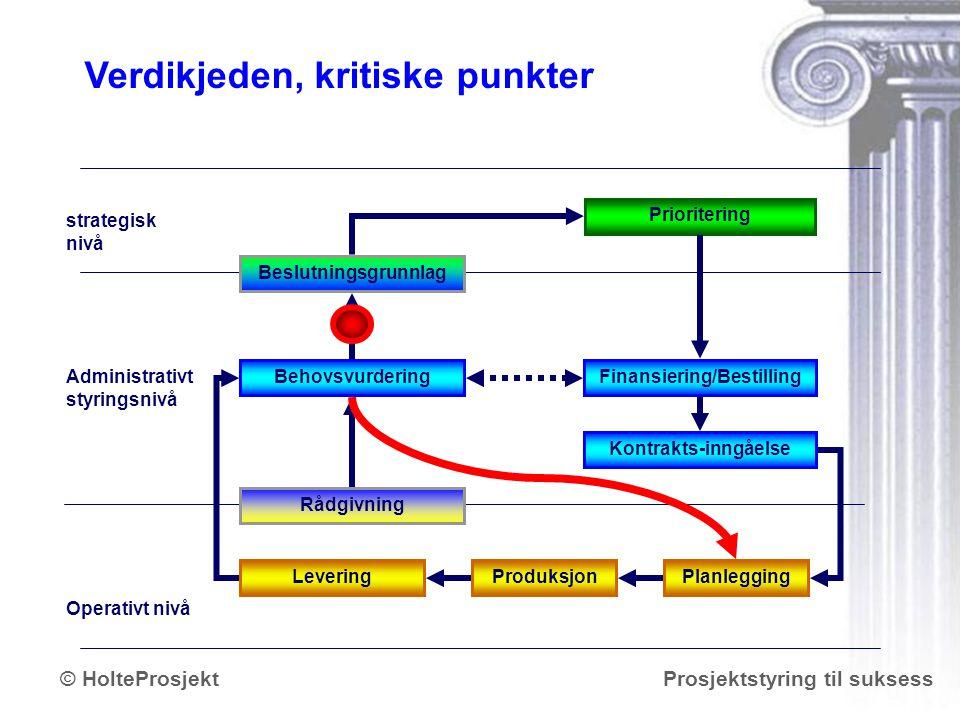 www.holteprosjekt.no Prosjektstyring til suksess© HolteProsjekt Planlegging BehovsvurderingFinansiering/Bestilling Prioritering strategisk nivå Admini