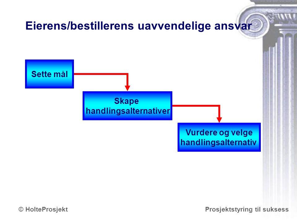 www.holteprosjekt.no Prosjektstyring til suksess© HolteProsjekt Eierens/bestillerens uavvendelige ansvar Vurdere og velge handlingsalternativ Skape ha