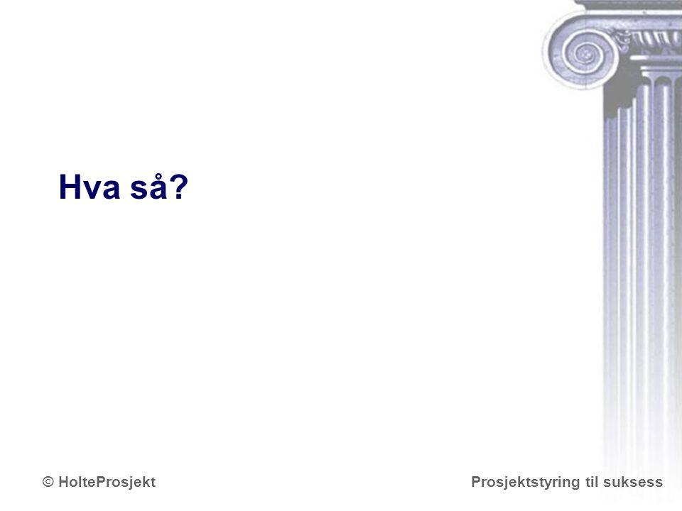 www.holteprosjekt.no Prosjektstyring til suksess© HolteProsjekt Hva så?