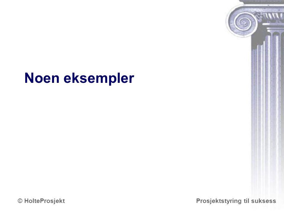 www.holteprosjekt.no Prosjektstyring til suksess© HolteProsjekt Noen eksempler