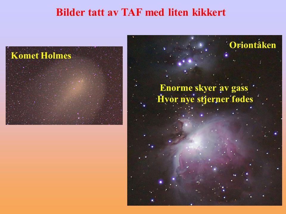 Komet Holmes Enorme skyer av gass Hvor nye stjerner fødes Bilder tatt av TAF med liten kikkert Oriontåken