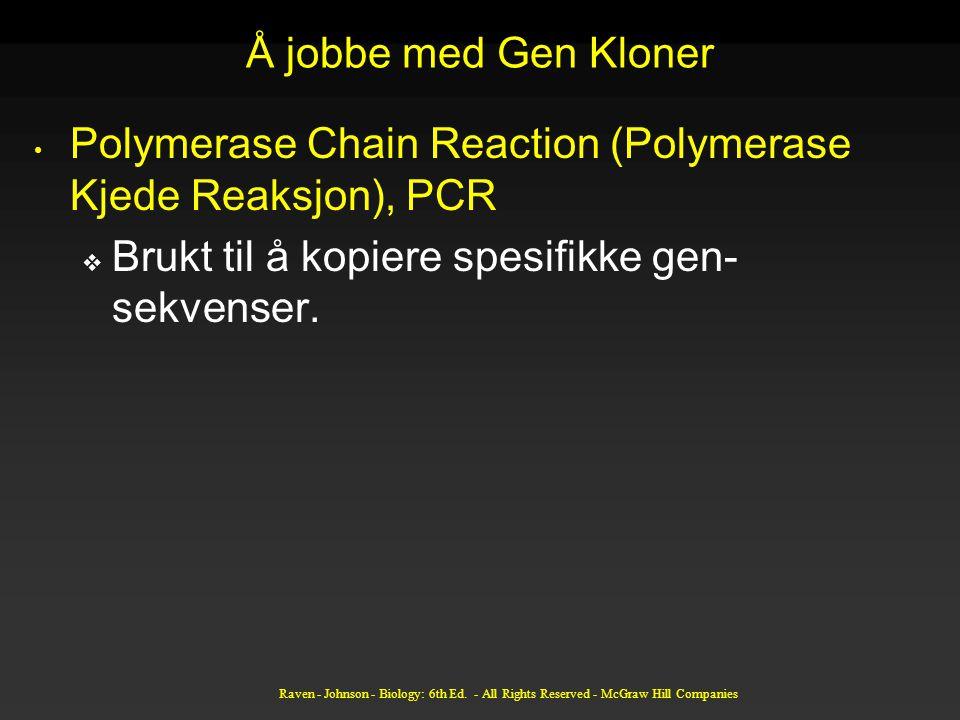Å jobbe med Gen Kloner Polymerase Chain Reaction (Polymerase Kjede Reaksjon), PCR  Brukt til å kopiere spesifikke gen- sekvenser.
