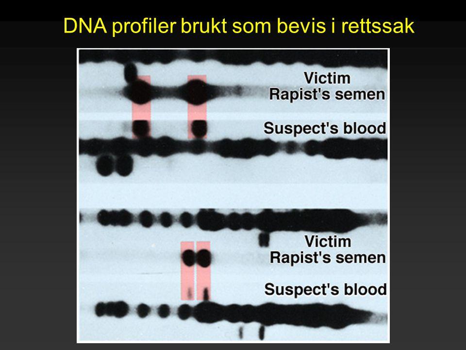 Raven - Johnson - Biology: 6th Ed. - All Rights Reserved - McGraw Hill Companies DNA profiler brukt som bevis i rettssak
