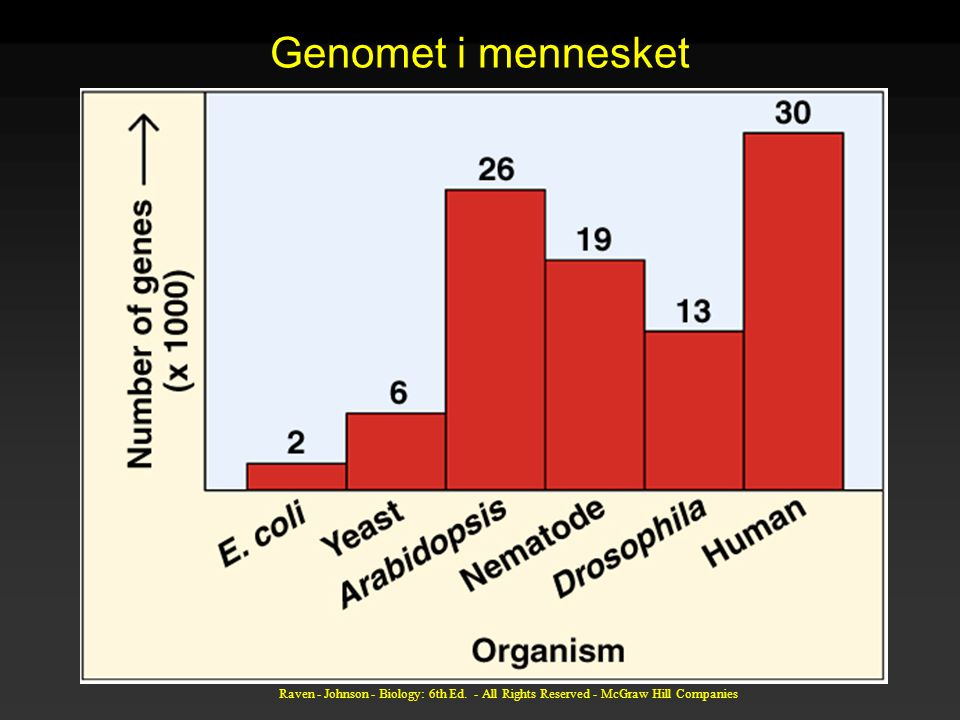 Raven - Johnson - Biology: 6th Ed. - All Rights Reserved - McGraw Hill Companies Genomet i mennesket