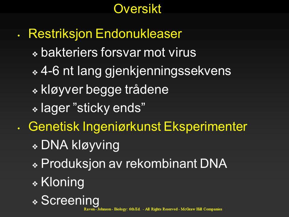 """Oversikt Restriksjon Endonukleaser  bakteriers forsvar mot virus  4-6 nt lang gjenkjenningssekvens  kløyver begge trådene  lager """"sticky ends"""" Gen"""