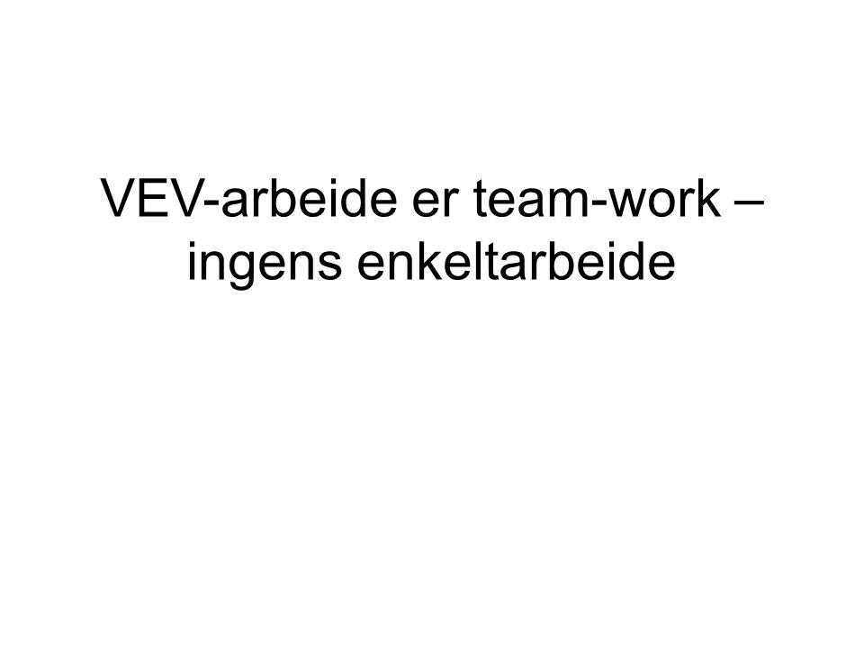 VEV-arbeide er team-work – ingens enkeltarbeide