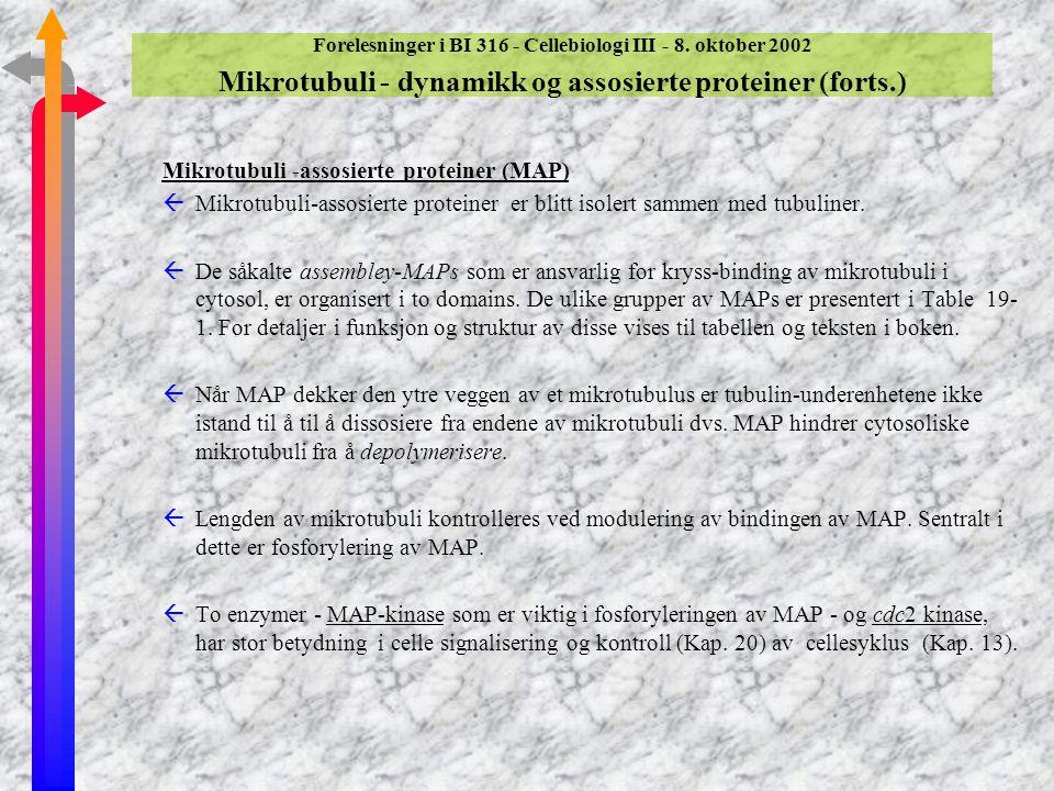 Forelesninger i BI 316 - Cellebiologi III - 8. oktober 2002 Mikrotubuli - dynamikk og assosierte proteiner (Del 19.2) Forbindelser som påvirker mikrot