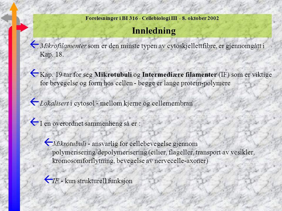Forelesninger i BI 316 - Cellebiologi III - 8. oktober 2002 Emner som gjennomgåes ßMikrotubuli - dynamikk og motorproteiner i mitose (Del 19.5) Mikrot