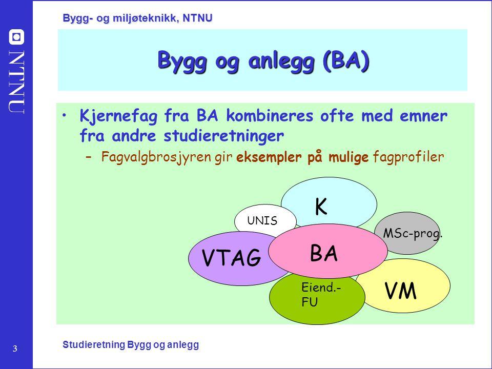 3 Bygg- og miljøteknikk, NTNU Studieretning Bygg og anlegg Bygg og anlegg (BA) Kjernefag fra BA kombineres ofte med emner fra andre studieretninger –F