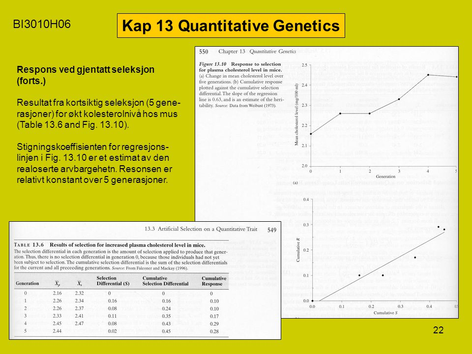 22 BI3010H06 Kap 13 Quantitative Genetics Respons ved gjentatt seleksjon (forts.) Resultat fra kortsiktig seleksjon (5 gene- rasjoner) for økt koleste