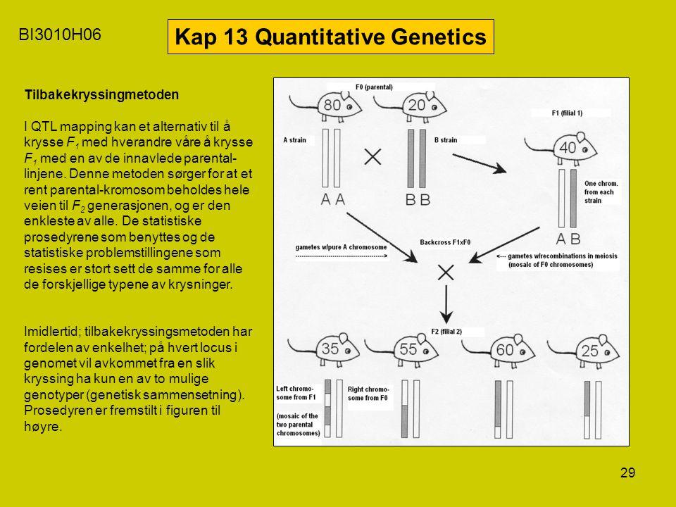29 BI3010H06 Kap 13 Quantitative Genetics Tilbakekryssingmetoden I QTL mapping kan et alternativ til å krysse F 1 med hverandre våre å krysse F 1 med