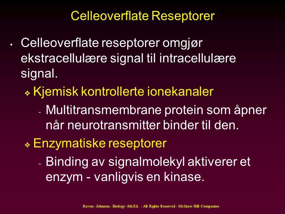Celleoverflate Reseptorer Celleoverflate reseptorer omgjør ekstracellulære signal til intracellulære signal.  Kjemisk kontrollerte ionekanaler - Mult