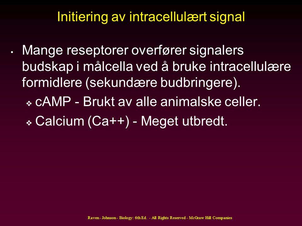 Initiering av intracellulært signal Mange reseptorer overfører signalers budskap i målcella ved å bruke intracellulære formidlere (sekundære budbringe