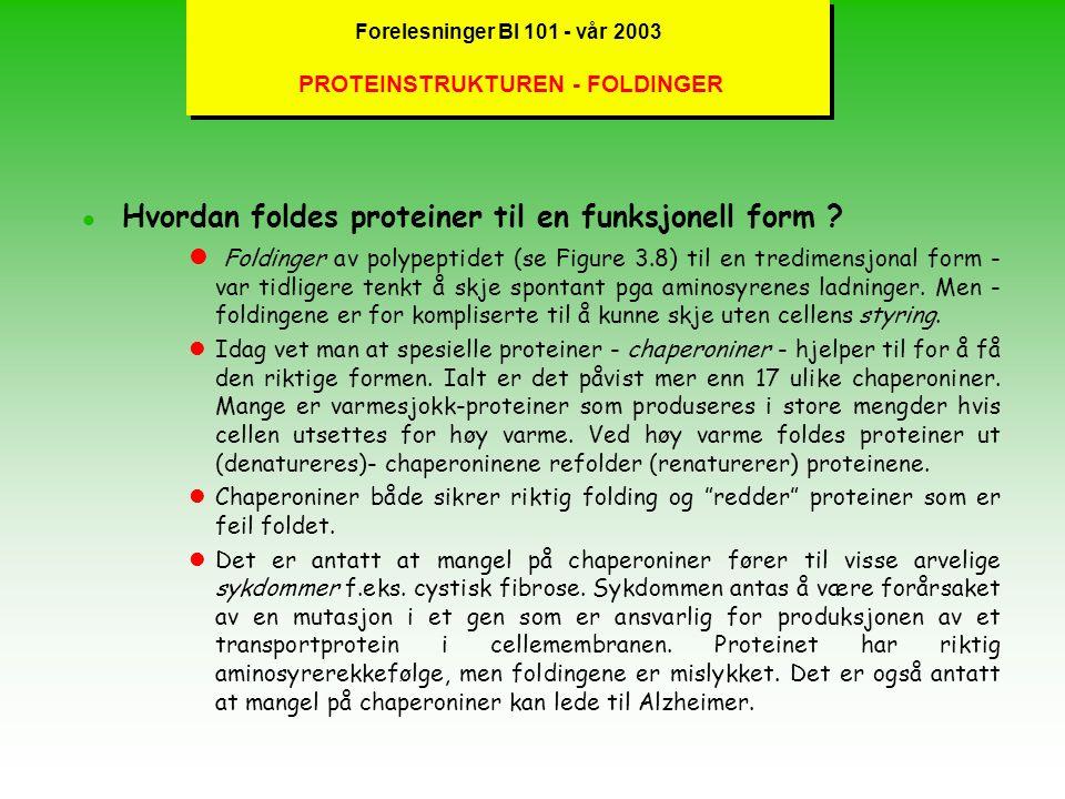 Forelesninger BI 101 - vår 2003 PROTEIN-DENATURERING OG BINDINGER lBåde sekundær- og tertiær- strukturen er basert på primærstrukturen; ved forsiktig