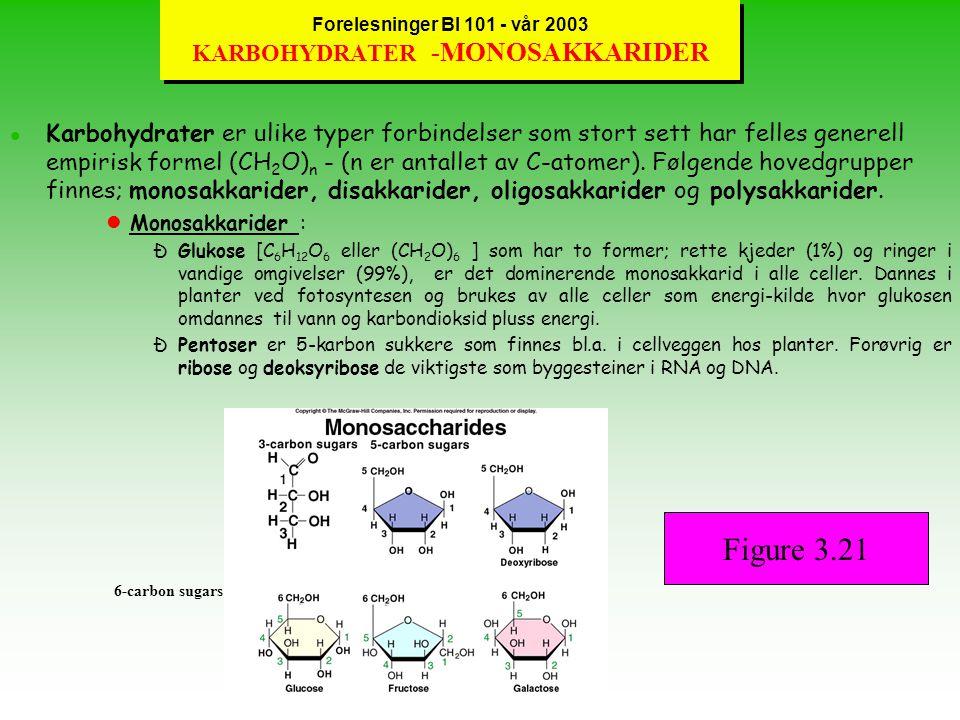 Forelesninger BI 101 - vår 2003 FETT SOM NÆRING lFett inneholder 40 C-atomer og forholdet mellom C og C-H-bindinger er avgjørende for energien som kan hentes ut fra fettet.