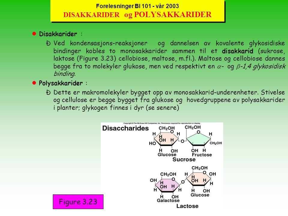 Forelesninger BI 101 - vår 2003 KARBOHYDRATER -MONOSAKKARIDER l Karbohydrater er ulike typer forbindelser som stort sett har felles generell empirisk formel (CH 2 O) n - (n er antallet av C-atomer).