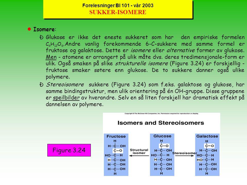 Forelesninger BI 101 - vår 2003 DISAKKARIDER og POLYSAKKARIDER lDisakkarider : ÐVed kondensasjons-reaksjoner og dannelsen av kovalente glykosidiske bindinger kobles to monosakkarider sammen til et disakkarid (sukrose, laktose (Figure 3.23) cellobiose, maltose, m.fl.).