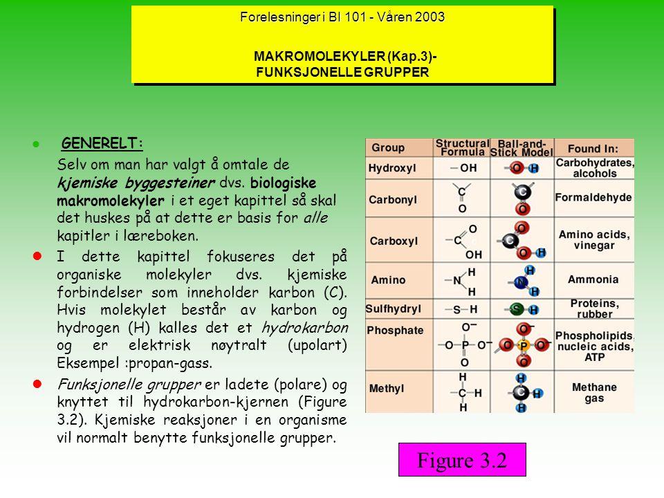 Forelesninger BI 101 - vår 2003 NIVÅER I PROTEINSTRUKTUREN (forts.) lTertiærstrukturen ; oppstår ved foldinger av polypeptidet (neste side) til en tredimensjonal form hvor ulike motifer bidrar.