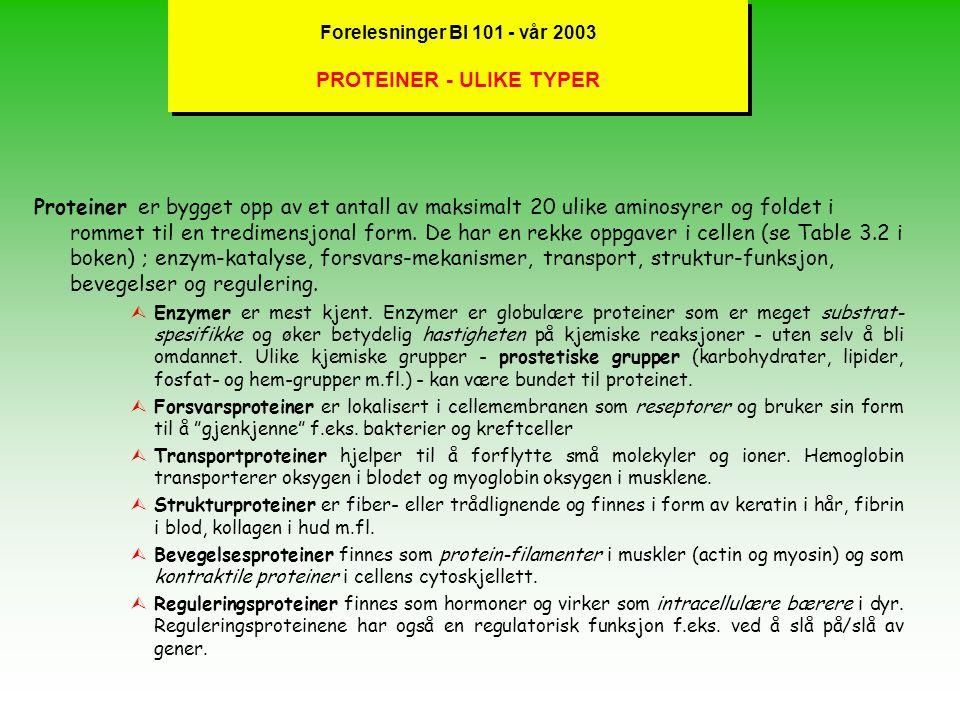 Forelesninger BI 101 - vår 2003 STRUKTUR -POLYSAKKARIDER lGraden av forgreninger i glykosidiske bindinger representerer forskjellen mellom cellulose (u-forgrenet), stivelse og glykogen (mest forgrenet) – (se Figure 3.26 og 3.27).