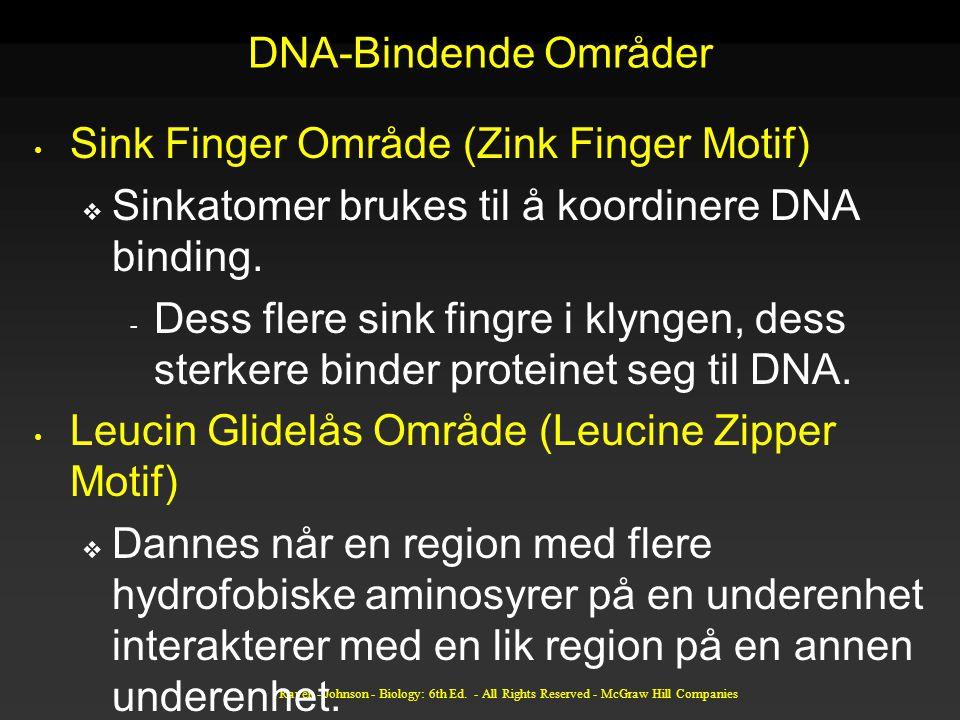 DNA-Bindende Områder Sink Finger Område (Zink Finger Motif)  Sinkatomer brukes til å koordinere DNA binding. - Dess flere sink fingre i klyngen, dess