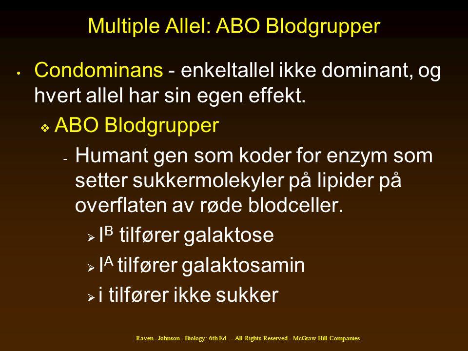 Multiple Allel: ABO Blodgrupper Condominans - enkeltallel ikke dominant, og hvert allel har sin egen effekt.  ABO Blodgrupper - Humant gen som koder