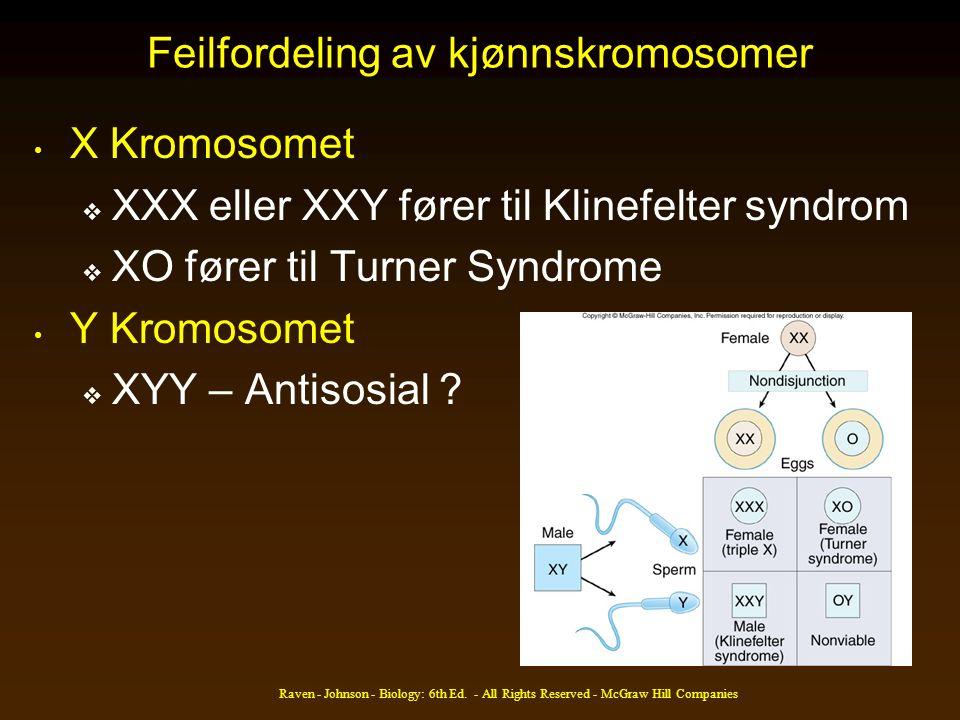 Feilfordeling av kjønnskromosomer X Kromosomet  XXX eller XXY fører til Klinefelter syndrom  XO fører til Turner Syndrome Y Kromosomet  XYY – Antis