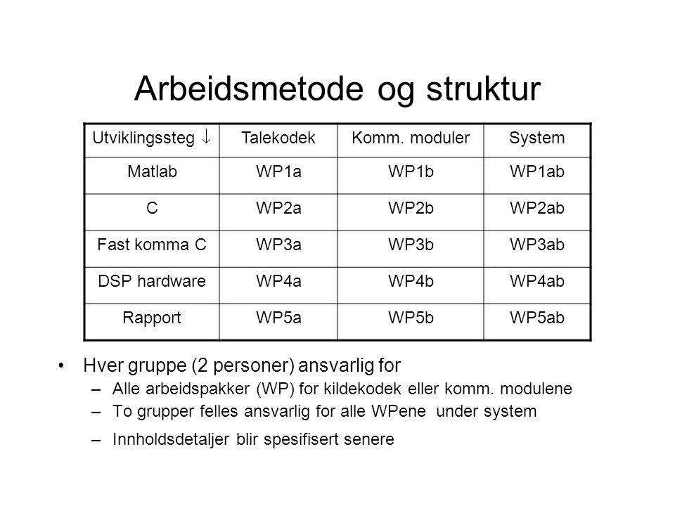Arbeidsmetode og struktur Hver gruppe (2 personer) ansvarlig for –Alle arbeidspakker (WP) for kildekodek eller komm.