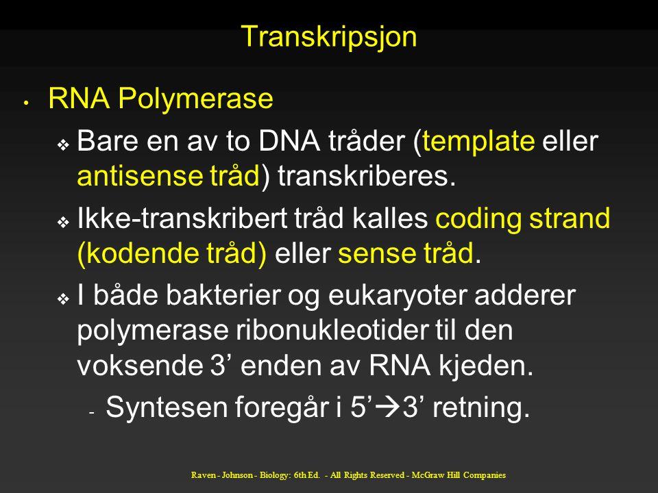 Transkripsjon RNA Polymerase  Bare en av to DNA tråder (template eller antisense tråd) transkriberes.  Ikke-transkribert tråd kalles coding strand (