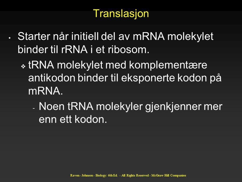 Translasjon Starter når initiell del av mRNA molekylet binder til rRNA i et ribosom.  tRNA molekylet med komplementære antikodon binder til eksponert