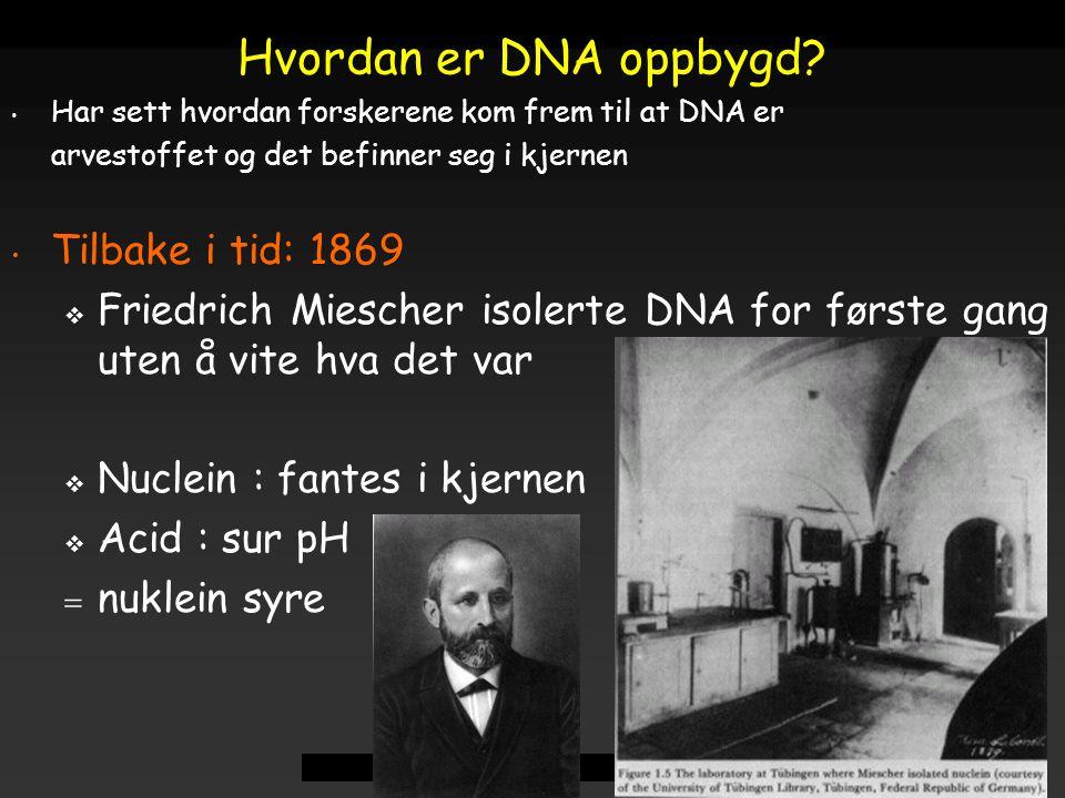 Raven - Johnson - Biology: 6th Ed. - All Rights Reserved - McGraw Hill Companies Har sett hvordan forskerene kom frem til at DNA er arvestoffet og det