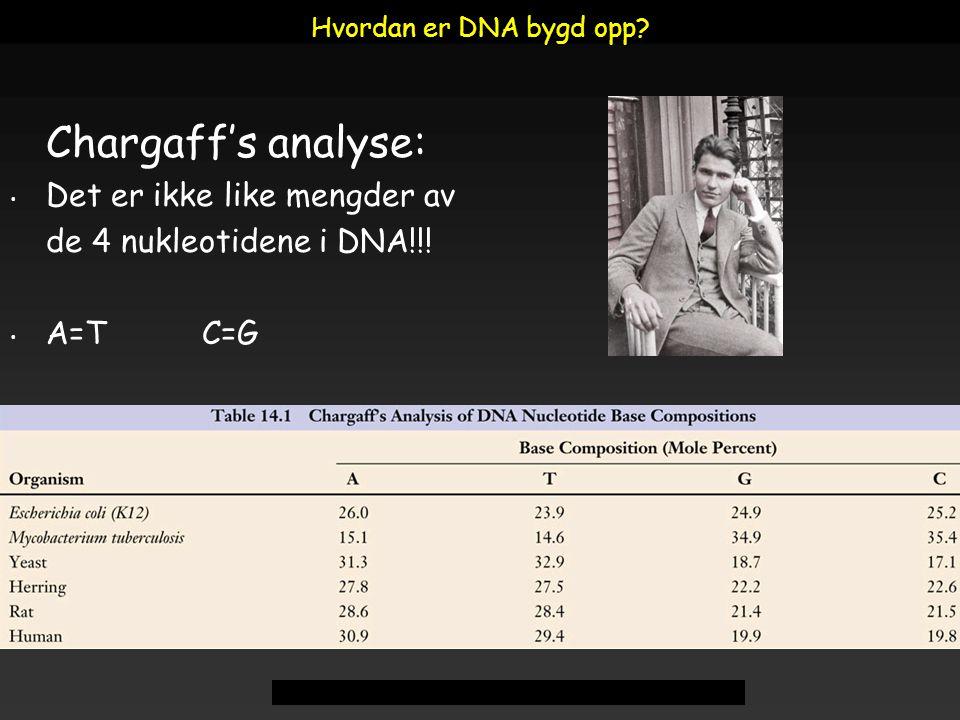 Raven - Johnson - Biology: 6th Ed. - All Rights Reserved - McGraw Hill Companies Chargaff's analyse: Det er ikke like mengder av de 4 nukleotidene i D