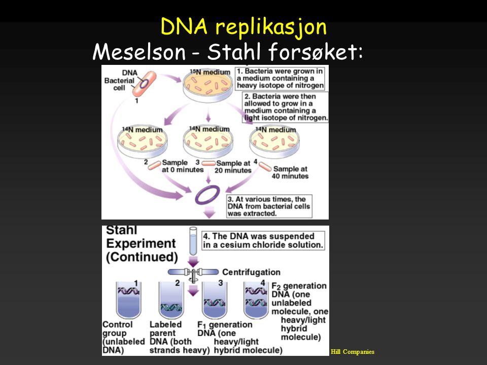 Raven - Johnson - Biology: 6th Ed. - All Rights Reserved - McGraw Hill Companies DNA replikasjon Meselson - Stahl forsøket: