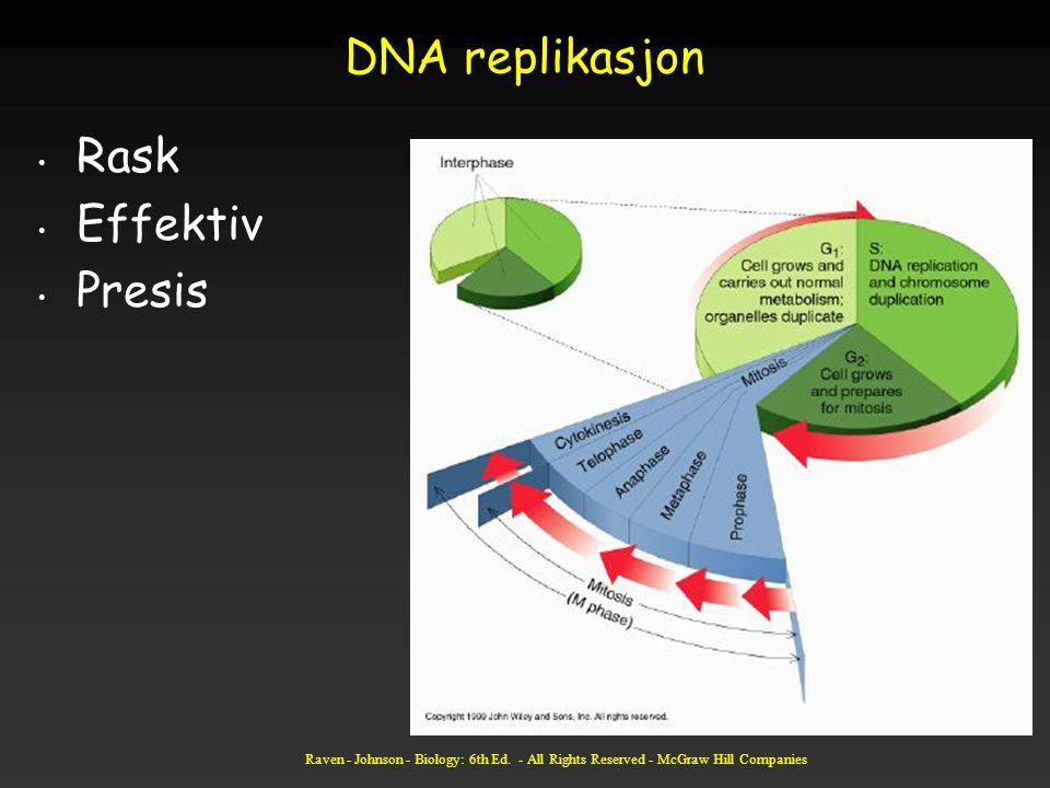 Raven - Johnson - Biology: 6th Ed. - All Rights Reserved - McGraw Hill Companies DNA replikasjon Rask Effektiv Presis