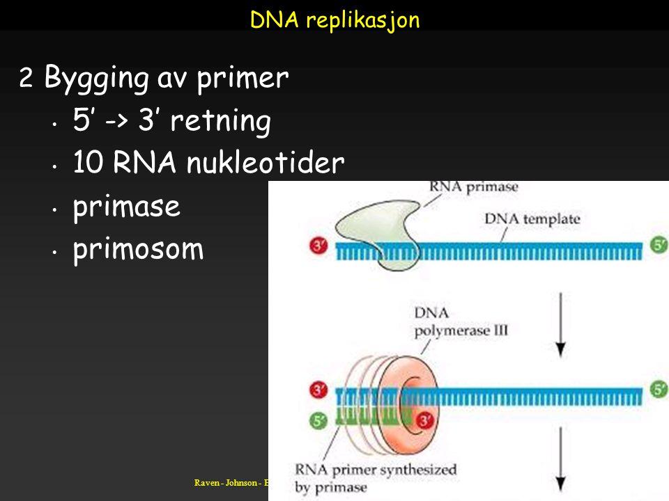 Raven - Johnson - Biology: 6th Ed. - All Rights Reserved - McGraw Hill Companies DNA replikasjon 2 Bygging av primer 5' -> 3' retning 10 RNA nukleotid