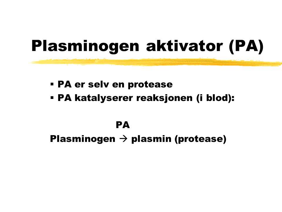Nedbrytning av basal lamina zFor å krysse basal lamina, skiller mange kreftceller ut enzymer som bryter ned proteiner i basal lamina zEn slik protease er plasminogen aktivator, som også skilles ut av tidlige embryo ved festing til livmorveggen Glatt muskel Bindevev Endotelceller Basal lamina Fig: Tidlig embryo Fig.: Tverrsnitt av blodåre