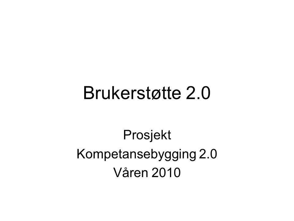 Brukerstøtte 2.0 Prosjekt Kompetansebygging 2.0 Våren 2010