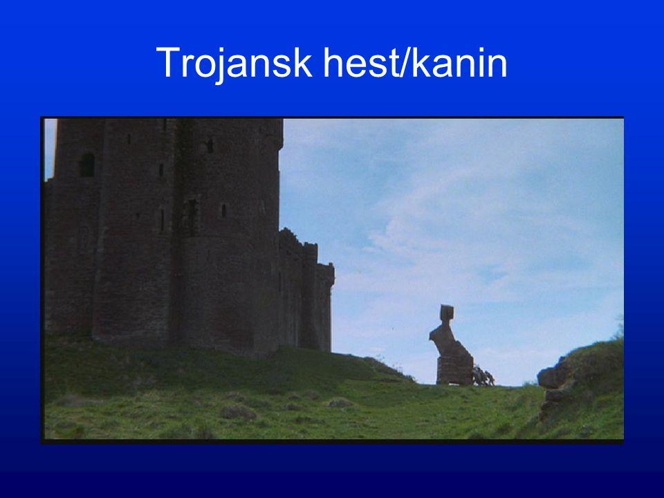 Trojansk hest/kanin