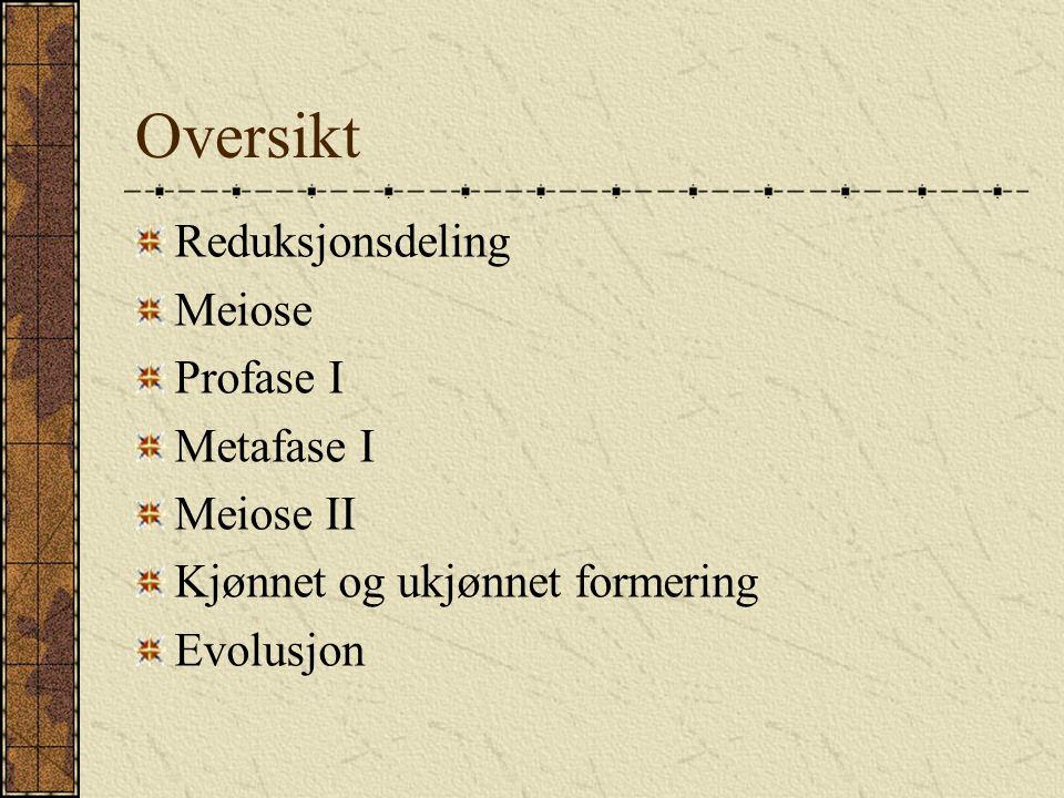Oversikt Reduksjonsdeling Meiose Profase I Metafase I Meiose II Kjønnet og ukjønnet formering Evolusjon