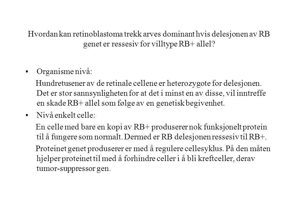 Hvordan kan retinoblastoma trekk arves dominant hvis delesjonen av RB genet er ressesiv for villtype RB+ allel? Organisme nivå: Hundretusener av de re