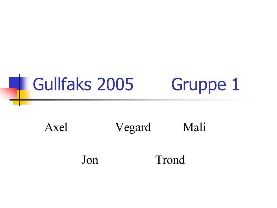 Gullfaks 2005 Gruppe 1 Axel VegardMali Jon Trond