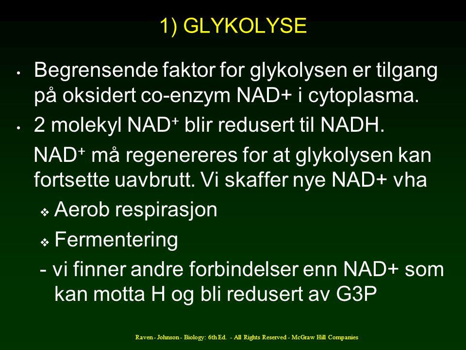 Raven - Johnson - Biology: 6th Ed. - All Rights Reserved - McGraw Hill Companies 1) GLYKOLYSE Begrensende faktor for glykolysen er tilgang på oksidert
