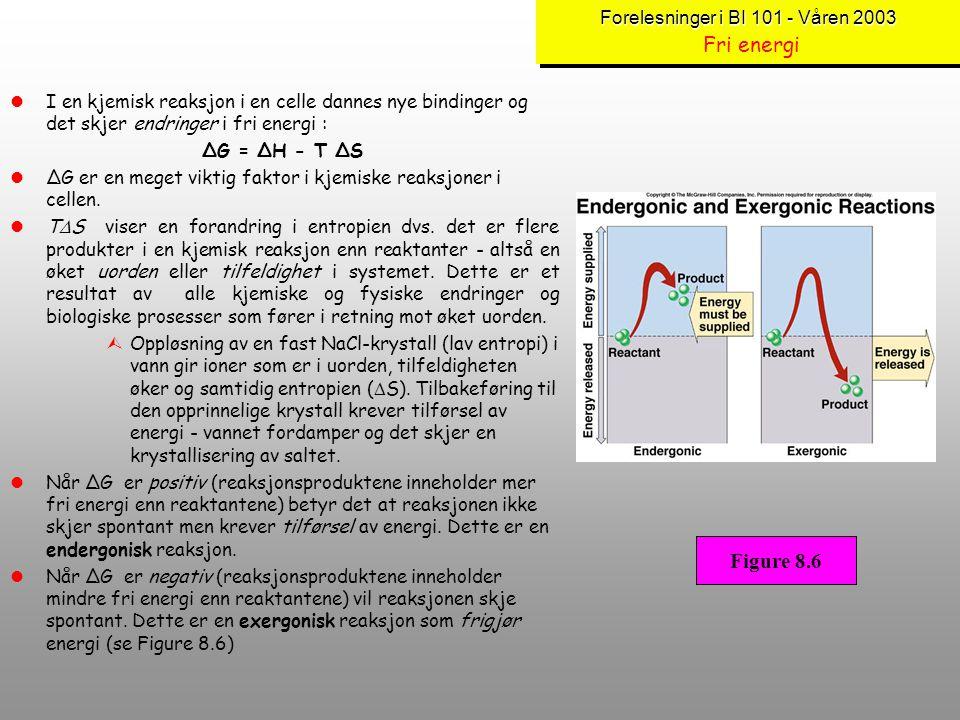 Forelesninger i BI 101 - Våren 2003 Forelesninger i BI 101 - Våren 2003 Fri energi lFri energi er den formen for energi som er tilgjengelig dvs. nyttb