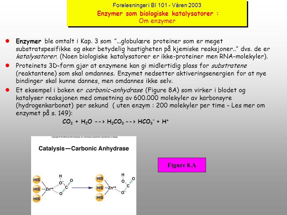 Forelesninger i BI 101 - Våren 2003 Forelesninger i BI 101 - Våren 2003 Aktiveringsenergi lAktiveringsenergi er den formen for ekstra energi som kreve