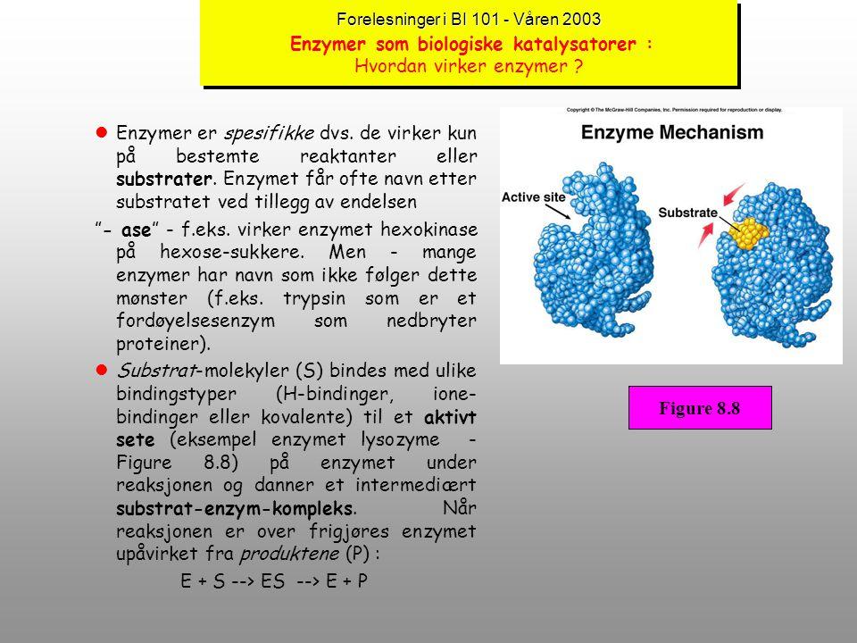 Forelesninger i BI 101 - Våren 2003 Forelesninger i BI 101 - Våren 2003 Enzymer som biologiske katalysatorer : Om enzymer lEnzymer ble omtalt i Kap. 3